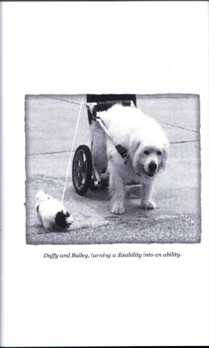Duffy_Book/Pg_116-comp.jpg